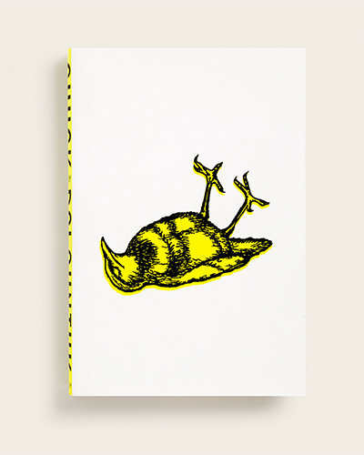 Book cover with drawing of dead yellow bird