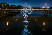 Illuminated tree sculpture in center of lake