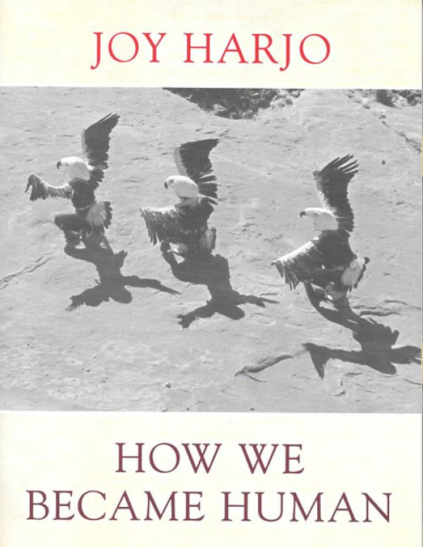 Book cover with title and author name over an aerial shot of three native american dancers in eagle costumes moving in a line from right to left
